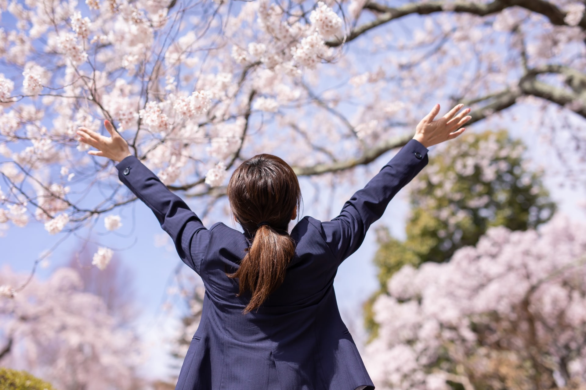 桜とスーツの女性