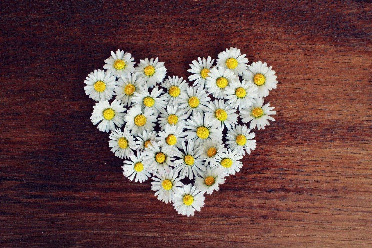 花で作ったハートマーク