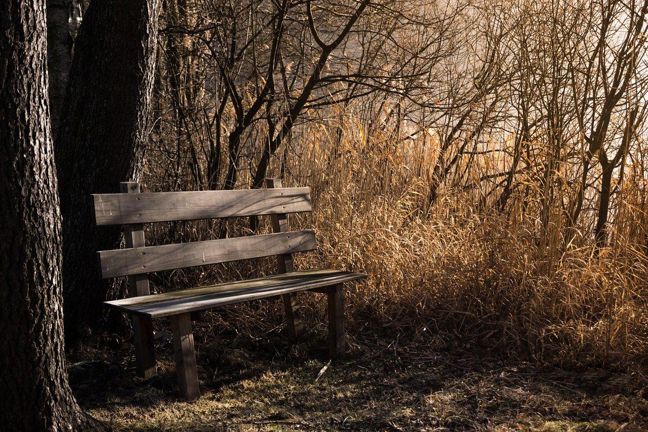 ベンチ、休憩