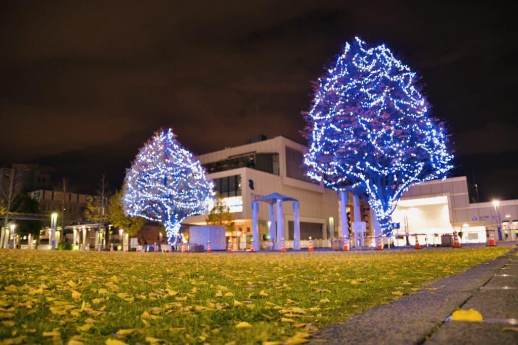 センターのクリスマス