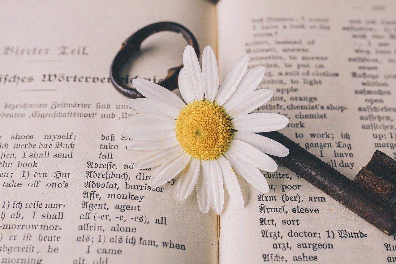 花と英語の画像