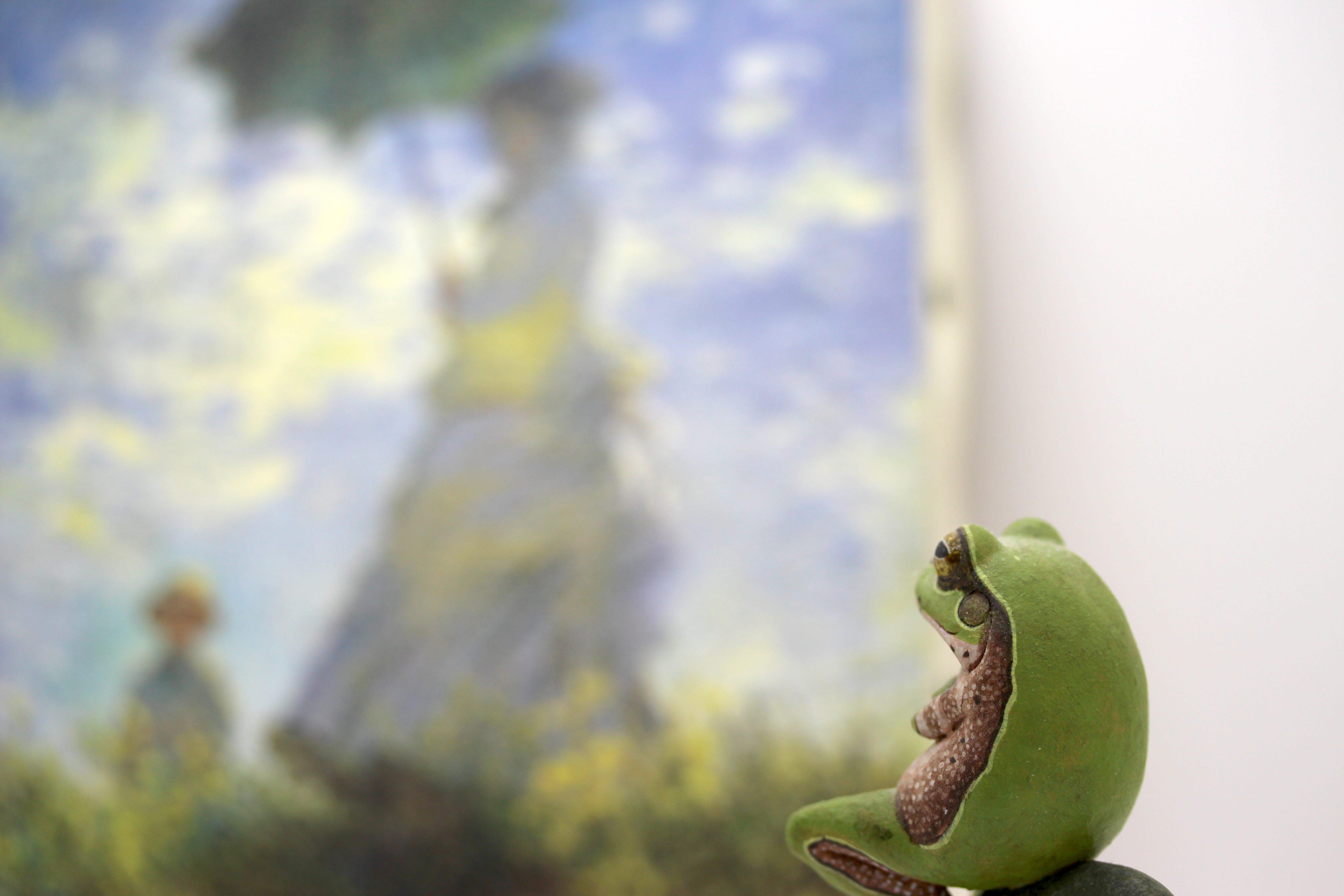 美術鑑賞する蛙