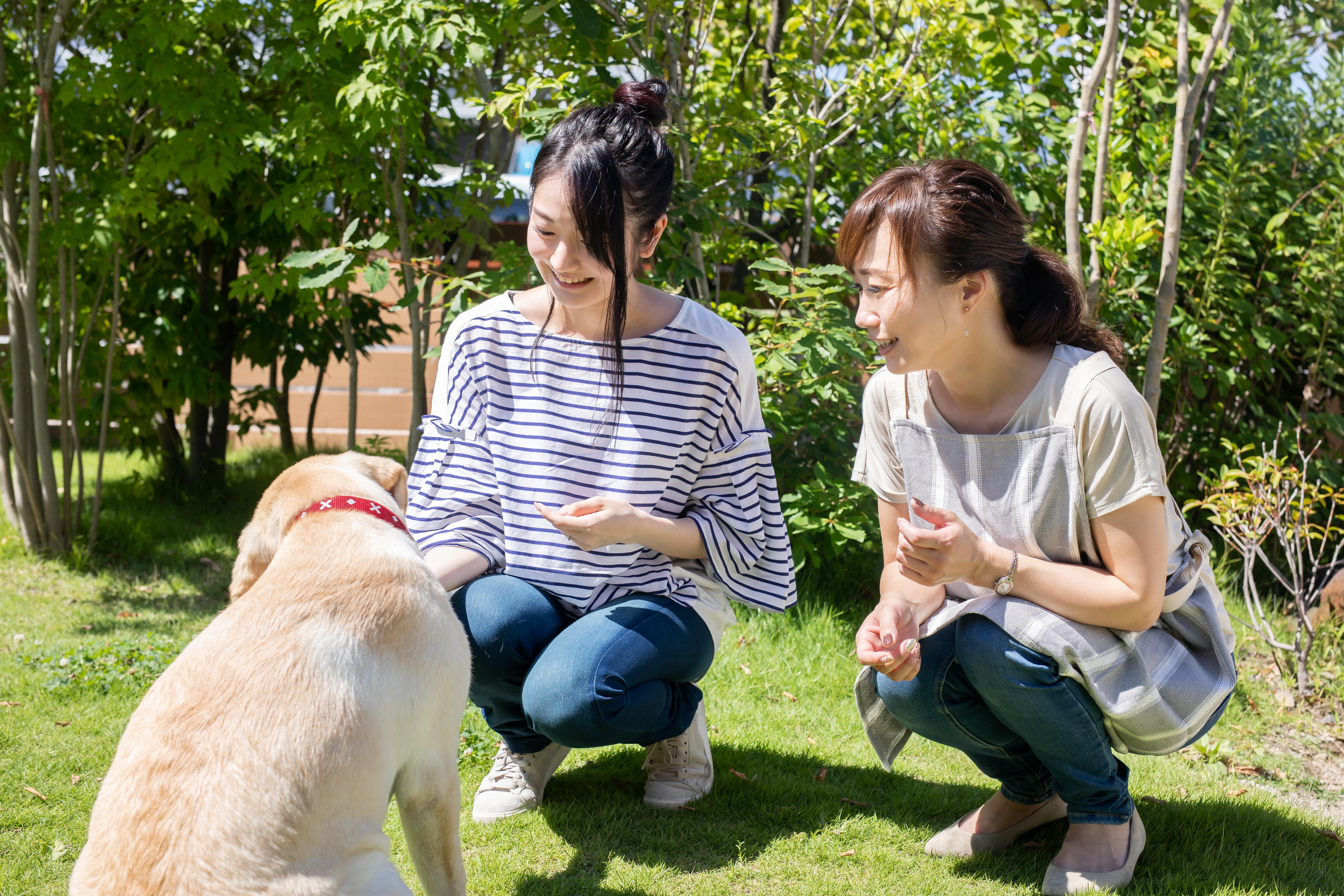 犬と遊ぶ女性二人