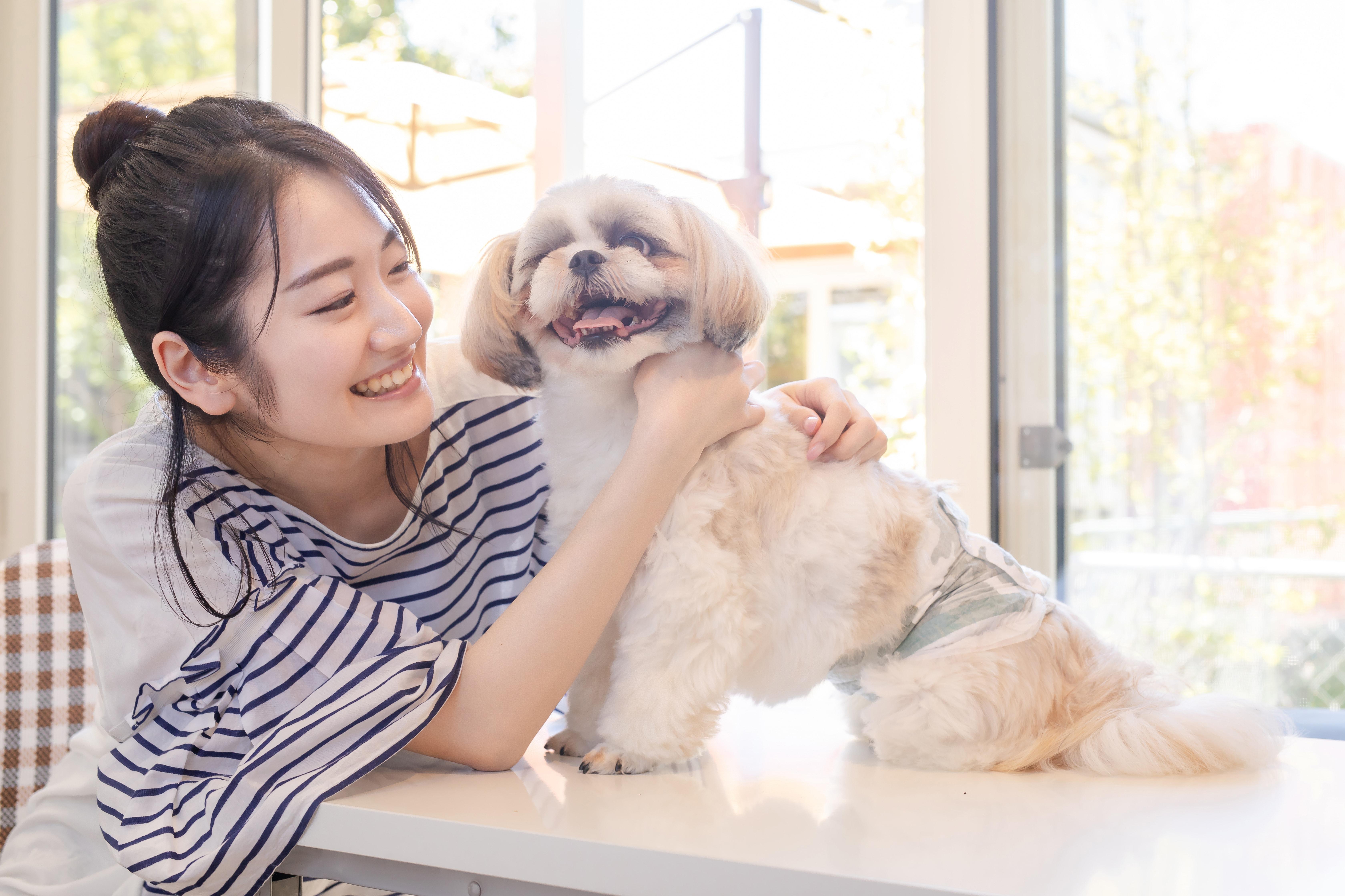 犬とじゃれる女性
