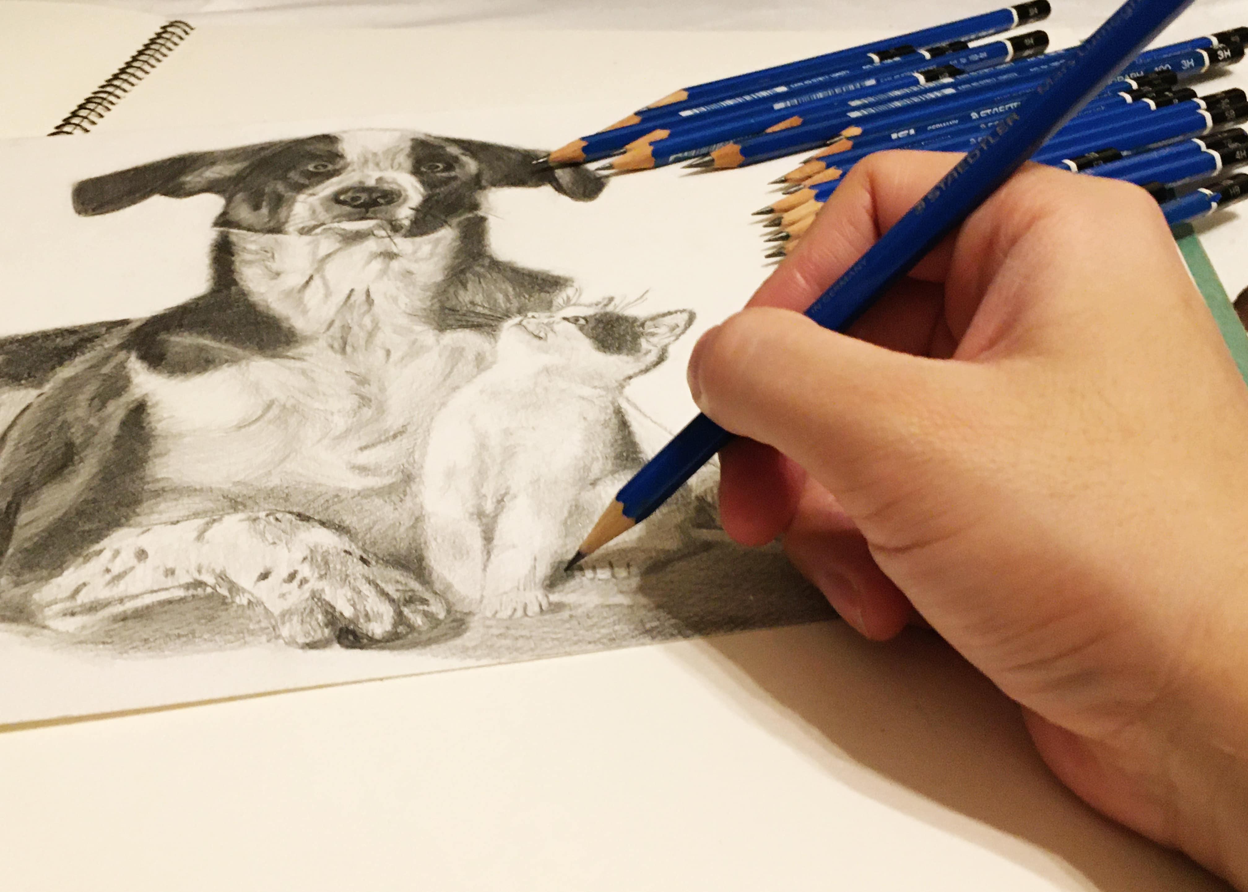 絵を描く女性の手元
